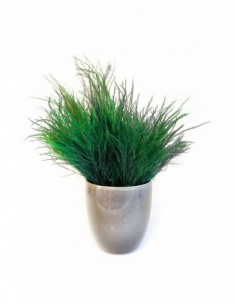 """Cadre végétal stabilisé LICHEN """"carré S"""""""