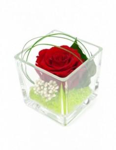 SOLIFLORE flute avec rose blanche